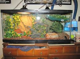 lets see your tank setup for your reptiles page 2
