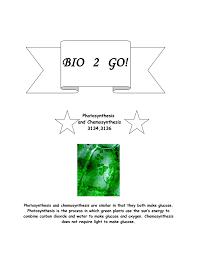 100 photosynthesis diagram worksheet answers cmap cmap