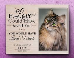 pet bereavement cat memorial frame loss of cat pet bereavement gift pet