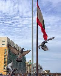 Libanese Flag Lebanon Flag Pigeons Streetphotography Streetstyle Buildings Sky