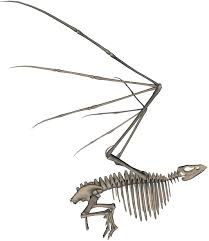 spooky skeleton png bird skeleton 2 by markopolio stock on deviantart