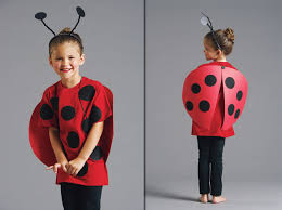 Halloween Costume Ladybug Family Ladybug Costume Ladybug Crafts Ladybug