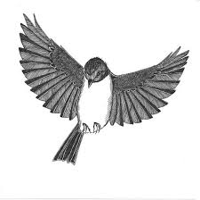 flying bird drawings clipart library clip art library