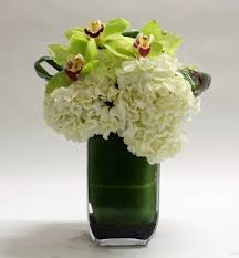 cymbidium orchid cymbidium orchid w hydrangeas in santa ca farrahs florist