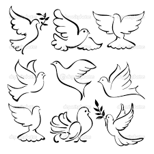 dove drawing outline kb jpeg dove sketches tattoos pinterest