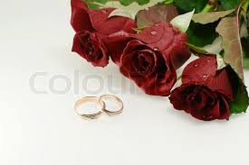 beautiful rose rings images Two wedding rings with three red beautiful roses over light jpg