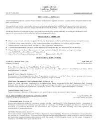 examples of career summary template billybullock us