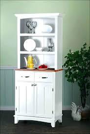 Ikea Kitchen Storage Cabinets Kitchen Pantry Cabinet Ikea Bloomingcactus Me