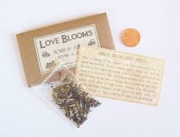 wedding seed favors sample wedding favor seeds flower seed favor by fairylandbazaar