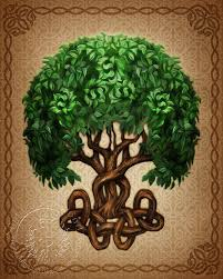 celtic tree of brigid ashwood