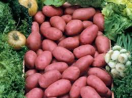 Pomme de terre,le plat du pauvre sauvegardé ?