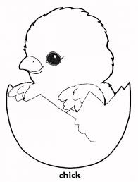coloring pages for chickens free download clip art free clip