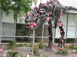 a flock of lawn flamingos can a t rex clean in 90