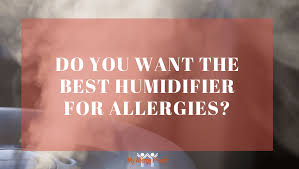 do you want the best humidifier for allergies