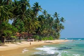 sri lanka the budget friendly island that offers a perfect dose