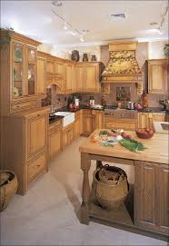 Best Hinges For Kitchen Cabinets by Kitchen Kitchen Cabinets Miami Best Kitchen Cabinets Diy Kitchen