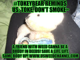 Bear Stuff Meme - tokey bear shares care memes imgflip