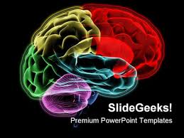 templates for powerpoint brain psychology powerpoint themes psychology powerpoint templates brain