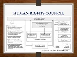 international organizations for human rights international organizations and globalization