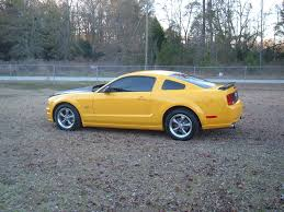 mustang style names style carbon fiber california ford mustang forum