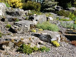garden design garden design with rock garden on pinterest rock