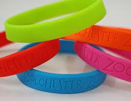 colchester zoo pens colchester zoo shop