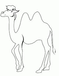 camel coloring page u0026 sheets camel coloring pages pinterest