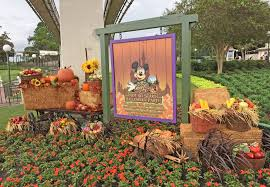 scary halloween guide to mickey u0027s not so scary halloween party 2017