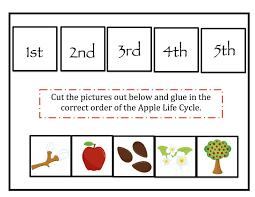 apple life cycle worksheet worksheets