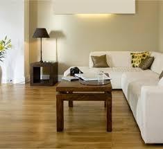 best wet mop for hardwood floors 13 best care u0026 maintenance of hardwood floors images on pinterest
