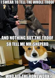 Dog Lawyer Meme - the lawyer dog