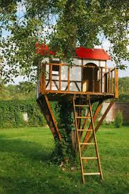 Treehouse Living How To Build A Treehouse In The Backyard