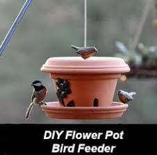 Diy Garden And Crafts - how to make a sunflower bird feeder bird feeder sunflowers and