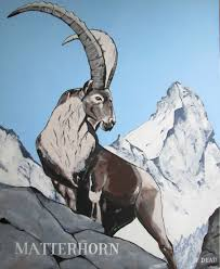 siege social swiss swiss alpine ibex alpineibex alpine ibex capraibex alps