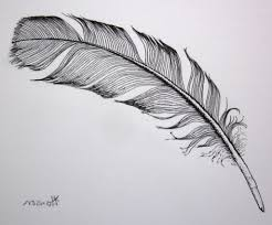 simple feather drawing how to draw a feather youtube drawing art