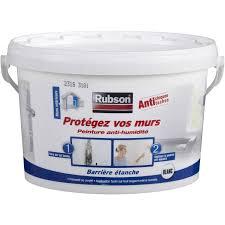 humidité mur chambre peinture antihumidité protégez vos murs rubson blanc 2 5 l leroy