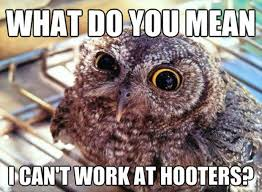 What Do You Mean By Meme - what do you mean i can t work at hooters memes and comics