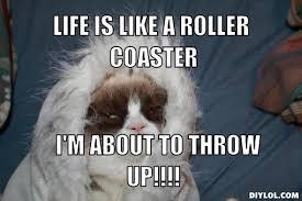 Grumpy Cat Meme Creator - grumpycat meme grumpy cat meme on www pinterest com erikakaisersot