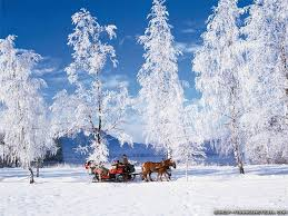 wallpaper desktop winter scenes winter desktop wallpapers free group 89