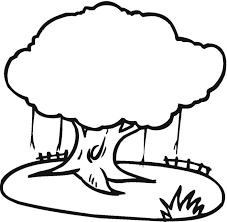 coloring pages of trees tree17 trees coloring pages trees