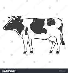cow farm drawing animal milk vector stock vector 377079586