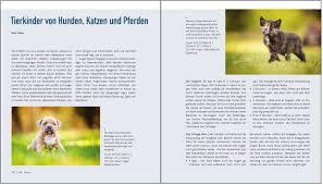 Leicht K Hen Die Fotoschule In Bildern Tierfotografie Amazon De Lambert Heil