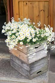 Daisy Centerpiece Ideas by Best 20 Daisy Decorations Ideas On Pinterest Paint Flowers
