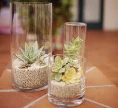 Decorating With Large Vases Best 25 Large Vases Ideas On Pinterest Vases Decor Pier 1