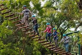 Treetop Canopy Tours by Top World U0027s Cheapest Exotic Travel Destinations Guatemala