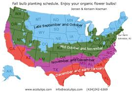 Nursing Compact States Map by Planting And Care For Your Fall Bulbs