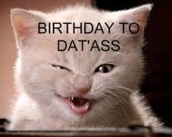 Dat Ass Cat Meme - funny happy birthday meme jokes funny wishes greetings