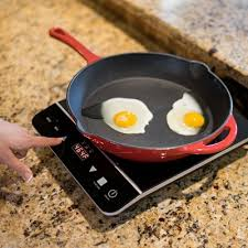 Best Induction Portable Cooktop Top 9 Best Portable Induction Cooktop Burner In 2017