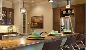Indoor Pendant Lights Lighting Perfect Stainless Steel Pendant Light Fixtures 45 About