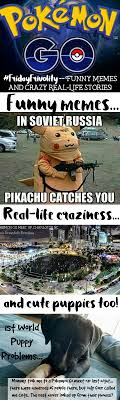 Memes About Crazy People - fridayfrivolity pokemon go funny memes my own real life crazy